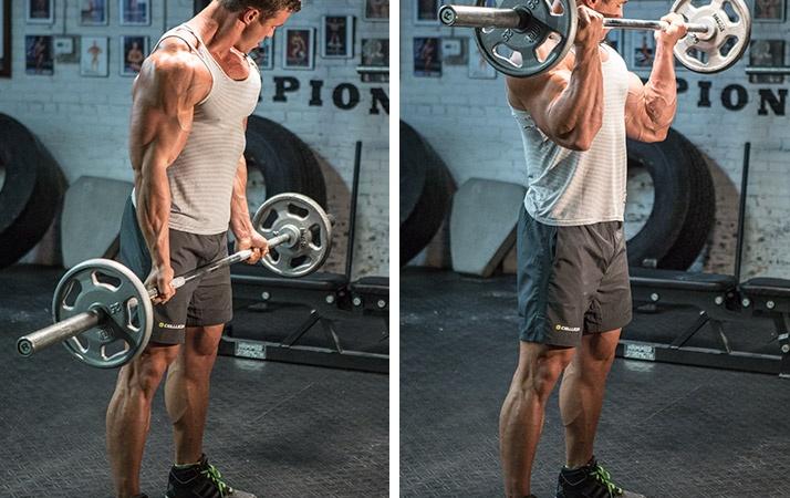 exercitii pentru biceps