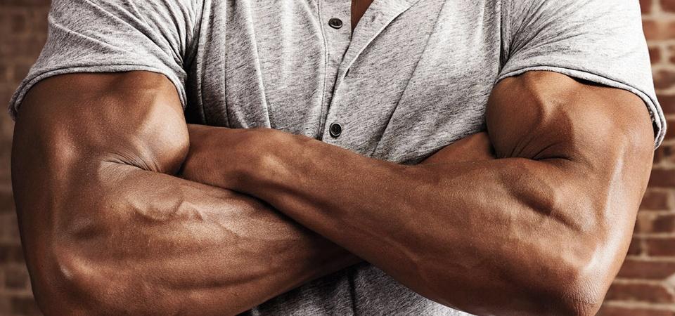 cresterea masei musculare